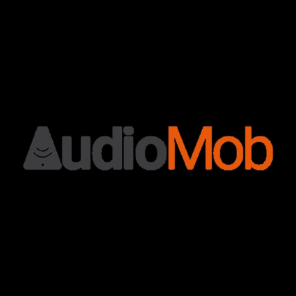 Co-Founder & CTO (AudioMob)